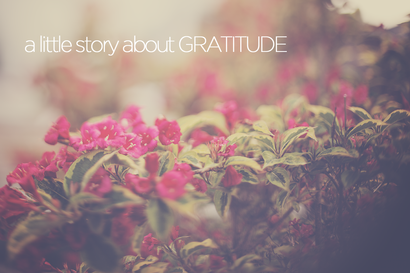 A story about Gratitude