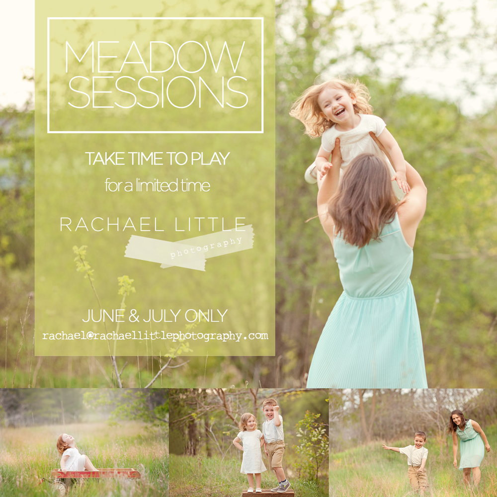 Meadow Sessions