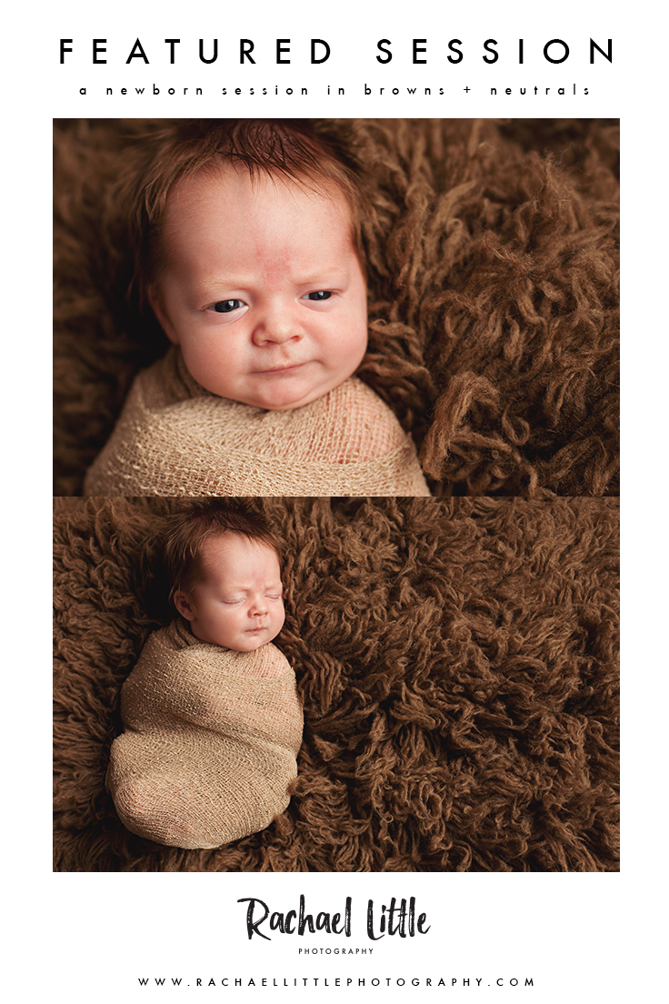 Newborn baby boy swaddled in neutrals and browns!  This baby had a full head of hair and was alert for some of his session.  This sweet little newborn baby was photographed in Woodstock, Ontario.