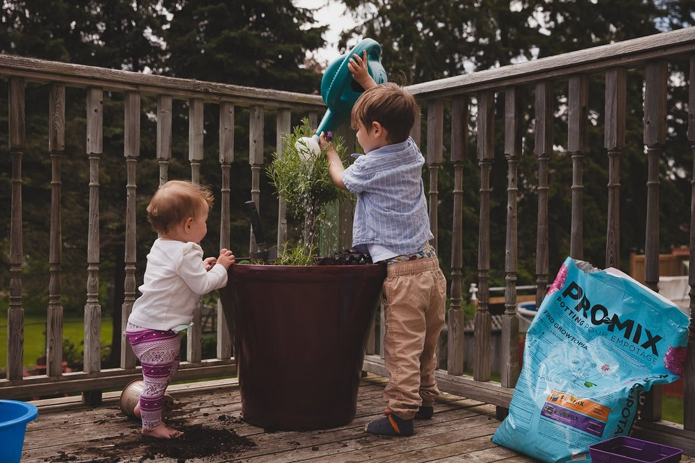 Watering an edible herb garden. Perfect summer project for little people.