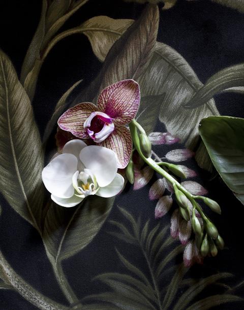 fleurs--2.jpg