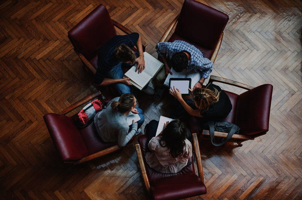 Free group studies -