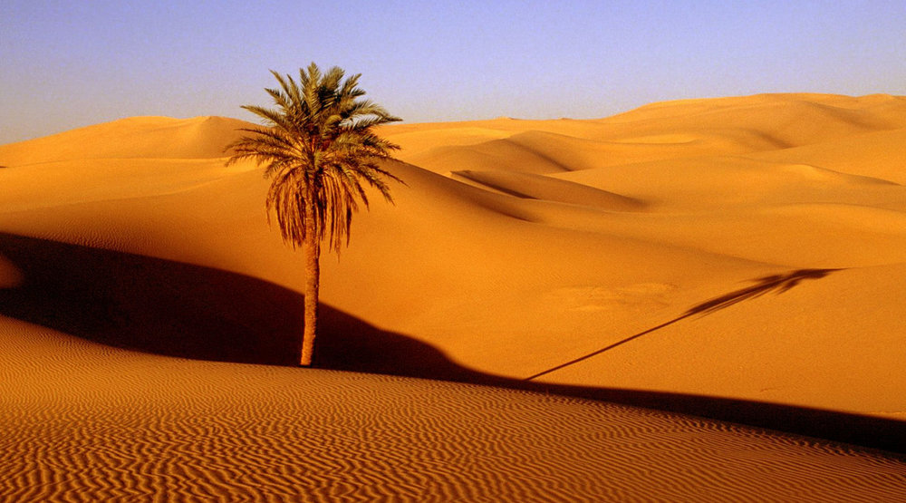 Copy of Sahara Desert