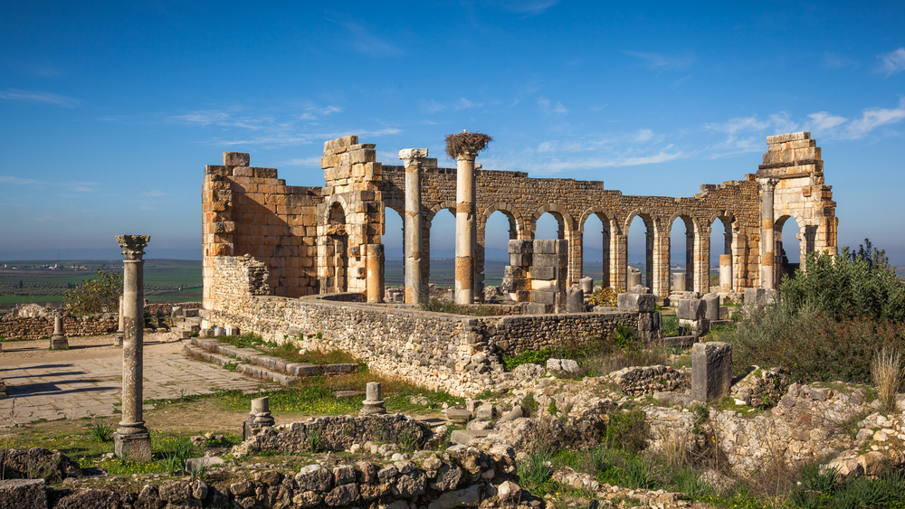 Copy of Volubilis