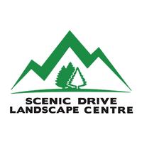 scenic drive landscape.png