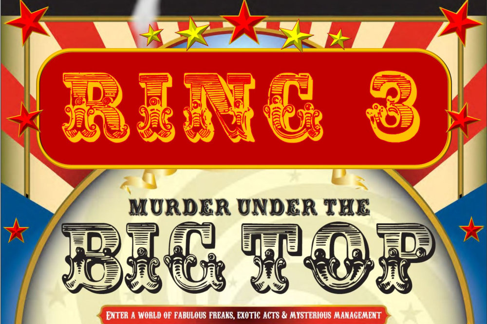 In Ring #3 you will find the Experts in Candy Floss, Duck Hunt and Heckling -