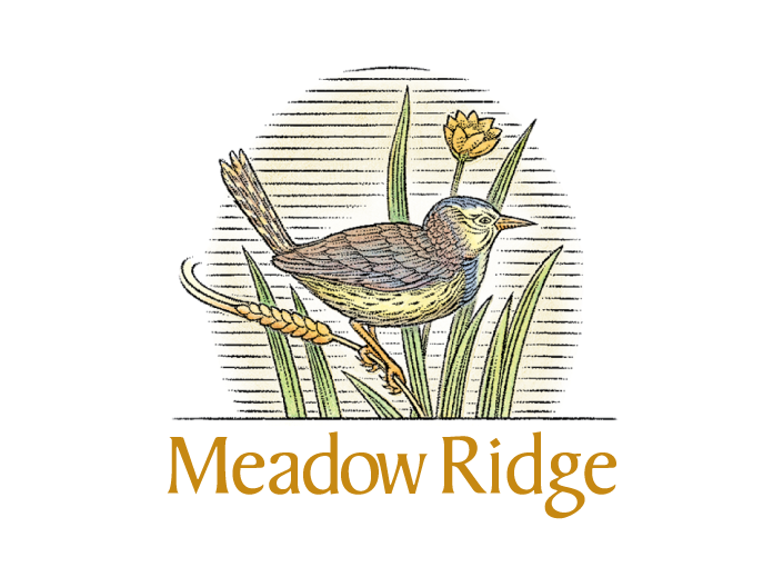 meadow ridge.png