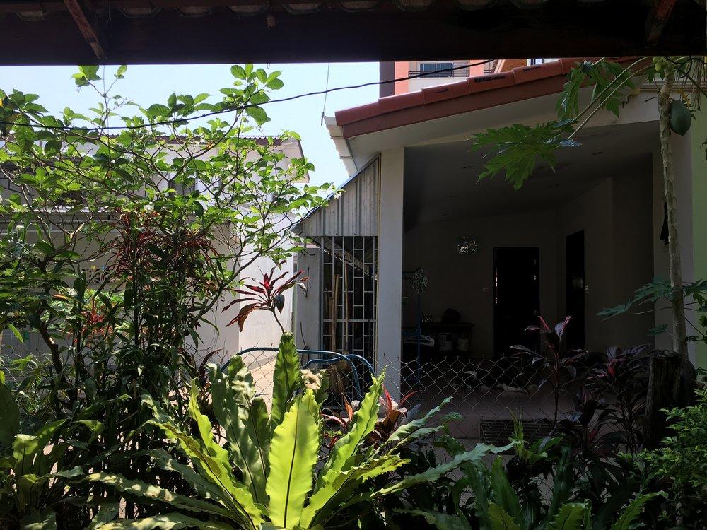 The landlords' house next door