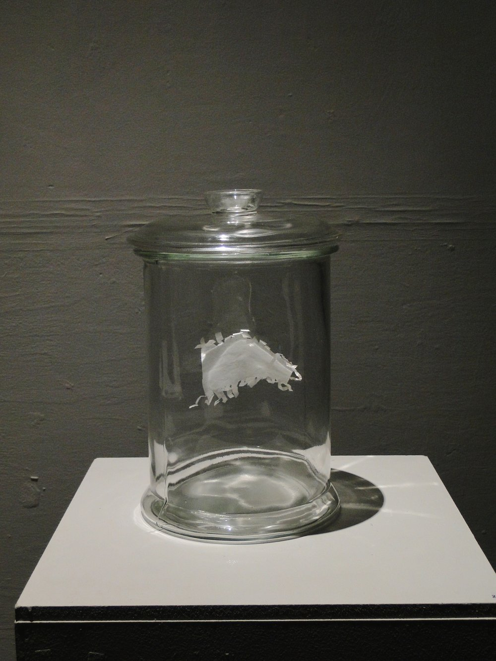 Sweet wrapper in bell jar, octagon 2013