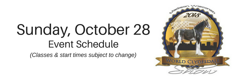 Saturday,October 272018-7.png