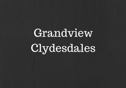 GrandviewClydesdales.png