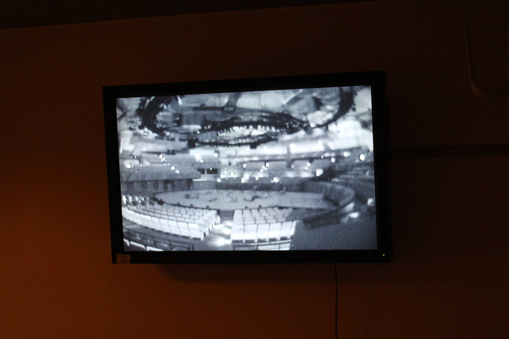 Watching the hall in infrared.
