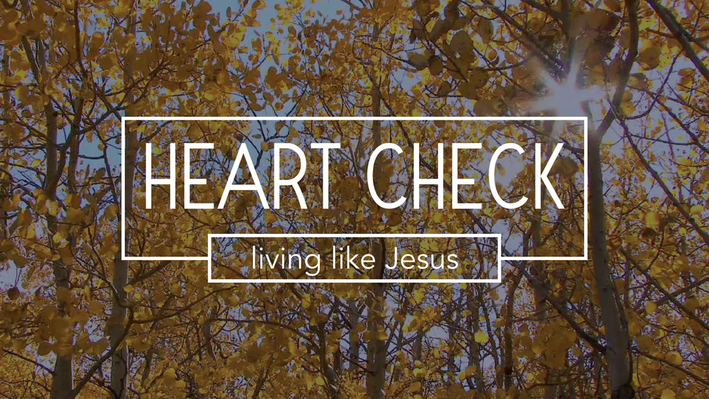 "Our current sermon series explores the idea of ""living like Jesus"" this weeks message is: Keep God's Commandments - 1 John 2:1-6 Pastor Andi Custer Sunday sermon notes for October 1, 2017 The Life Group study guide is used for the weekly Life Group meeting LIFE GROUP STUDY GUIDE"
