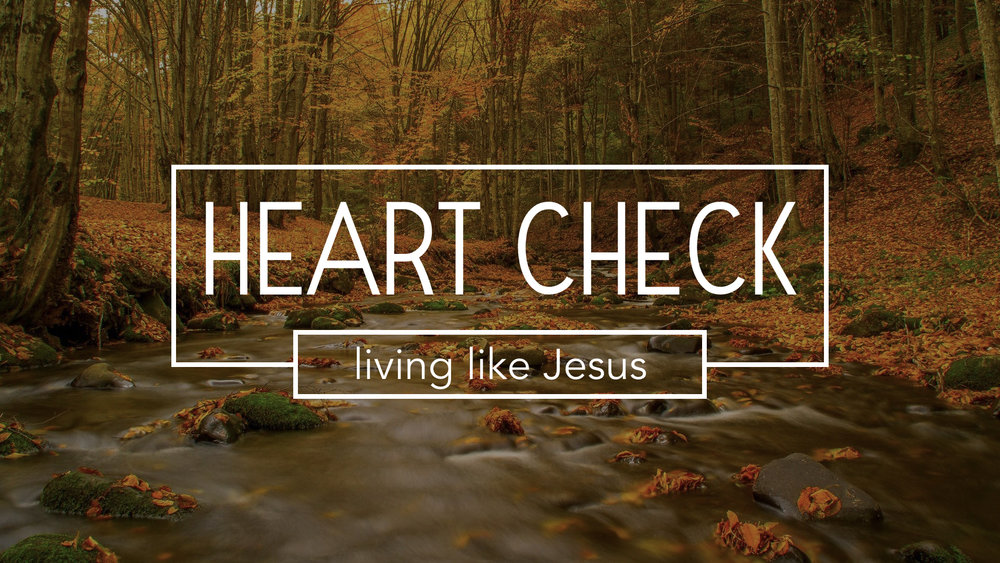 "Our current sermon series explores the idea of ""living like Jesus"" this weeks message is: Deeply Love Christians - 1 John 2:7-14 Pastor Jon Tolly Sunday sermon notes for October 8, 2017 The Life Group study guide is used for the weekly Life Group meeting LIFE GROUP STUDY GUIDE"
