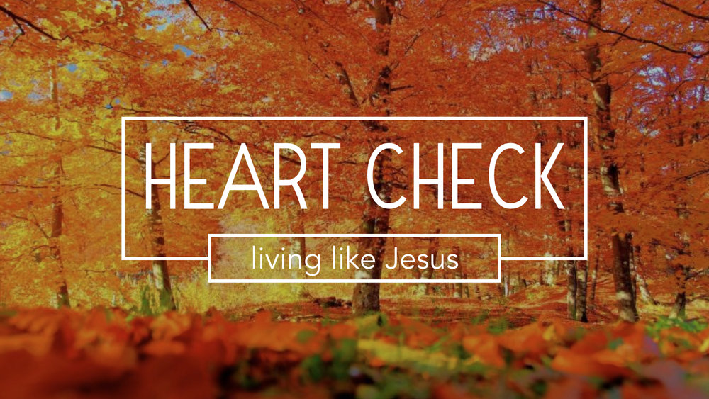 """Our current sermon series explores the idea of """"living like Jesus"""" this weeks message is: Confess Christ - 1 John 2:18-25 - 1 John 2:15-17 Pastor Jon Tolly The Life Group study guide is used for the weekly Life Group meeting LIFE GROUP STUDY GUIDE"""