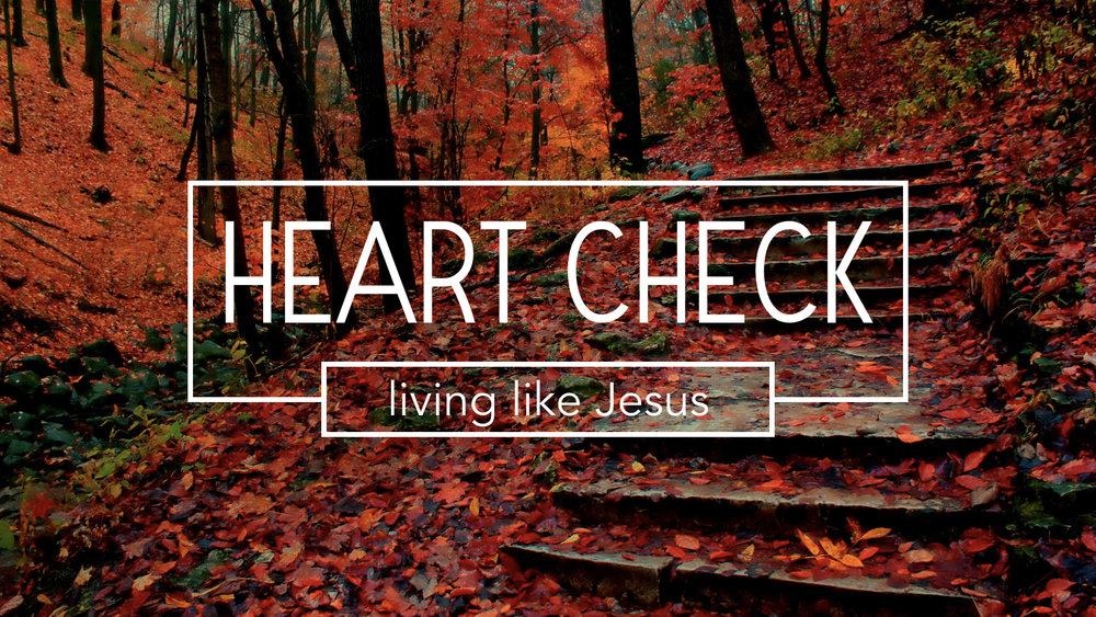 "Our current  sermon series  explores the idea of ""living like Jesus"" this weeks message is:   Practice Righteousness - 1 John 2:26-29  - Pastor Jon Tolly   Sunday sermon notes  for October 29, 2017  The Life Group study guide is used for the weekly Life Group meeting  LIFE GROUP STUDY GUIDE"