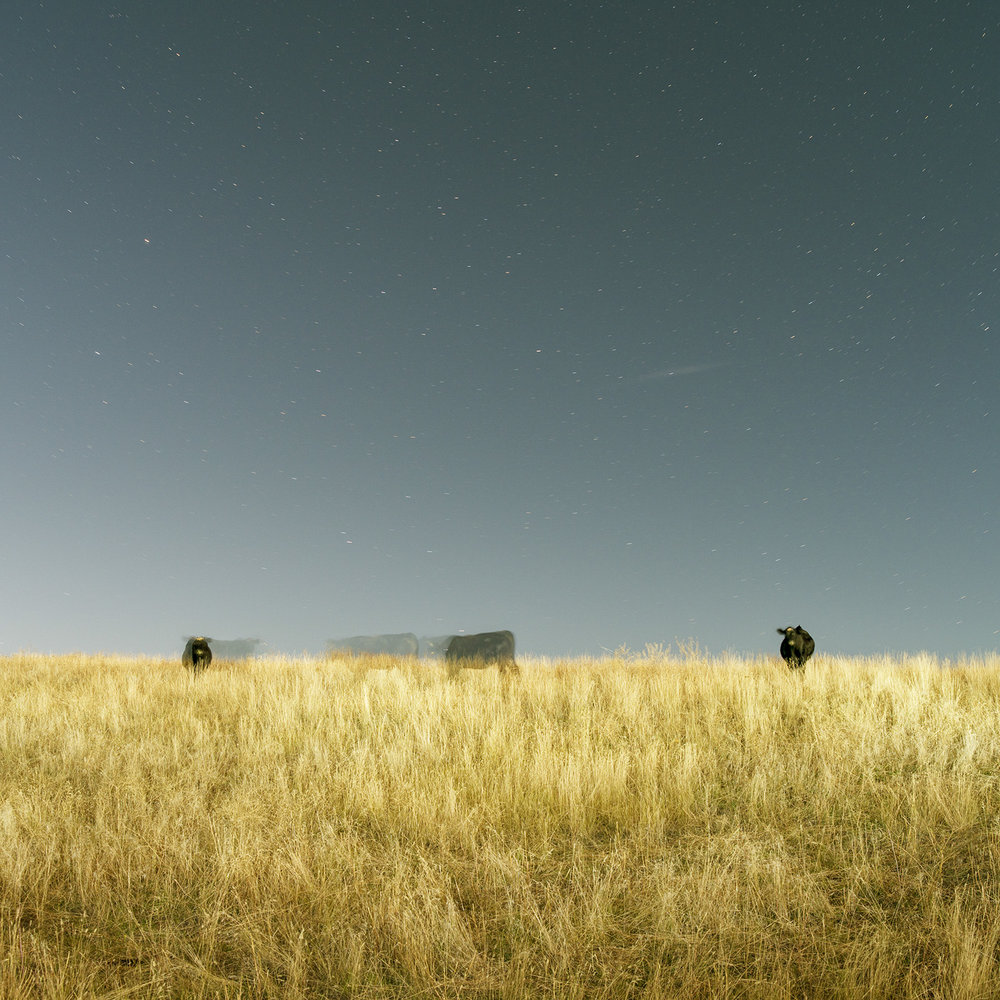 Right to Left Under Stars, archival inkjet, 30 x 30 in.
