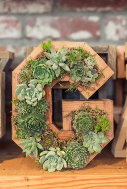 Succulent Letters, Numbers, and Hearts - $29.99