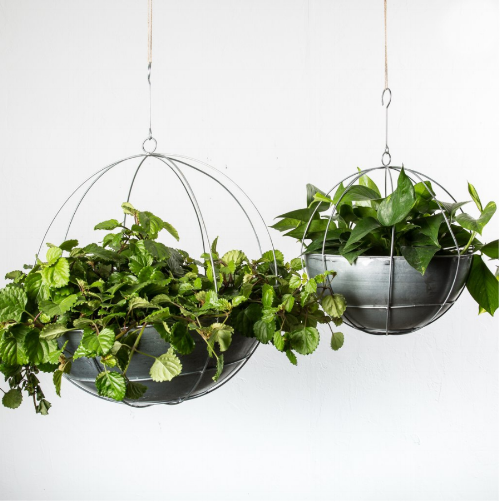 Hanging Planter Orb - $38.00