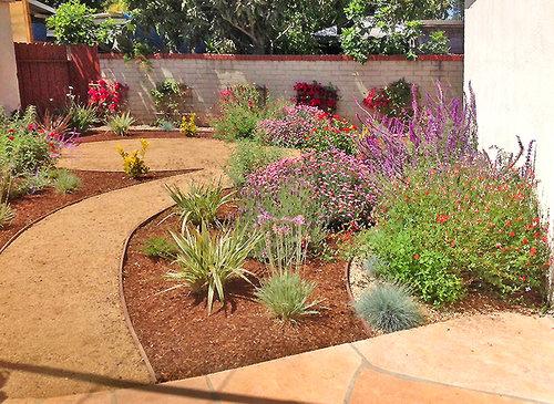 drought-tolerant -landscape_flowers_vines-decomposed-granite-walkway-mulch-flores- - California Friendly Landscapes — Floresartscape.com