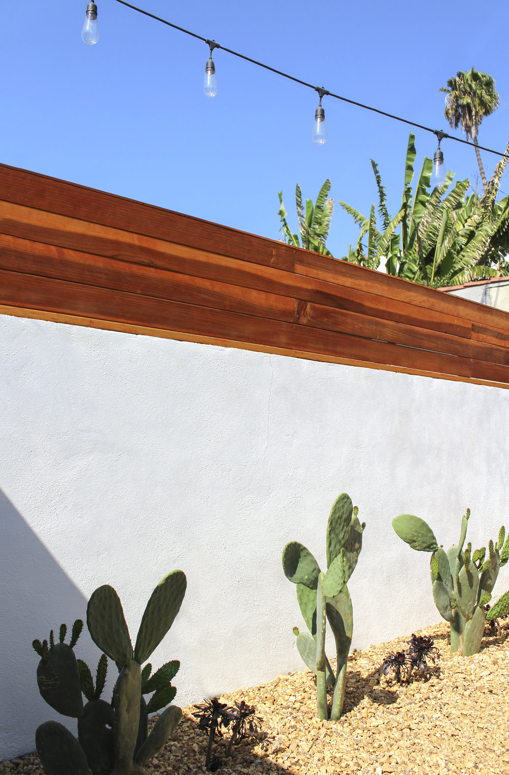 Redwood fence sits atop a traditional white stucco wall while prickly pear cactus rests in colored gravel, giving this area a hip desert feel.