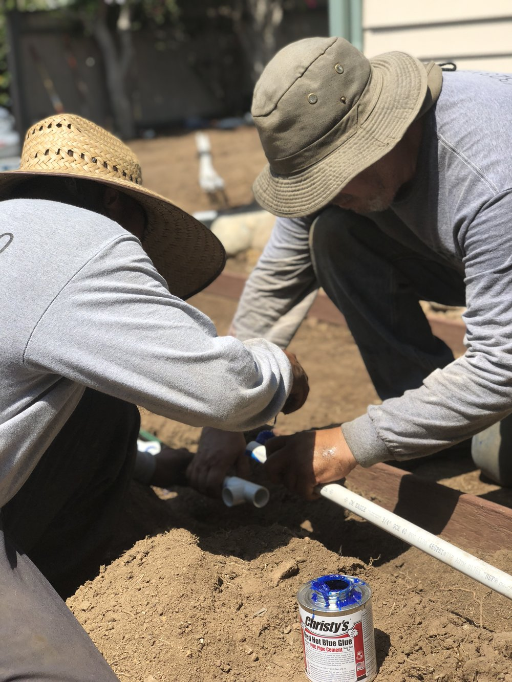 Flores Artscape employees install an irrigation system at a drought-tolerant project in-progress.
