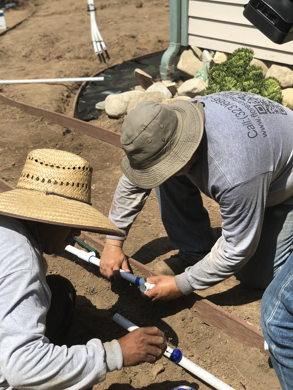 Flores Artscape technicians install drip irrigation.
