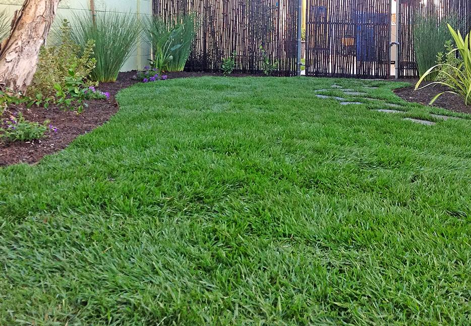 backyard-landscaping-lawn-installation-los-angeles-2-flores-artscape.jpg