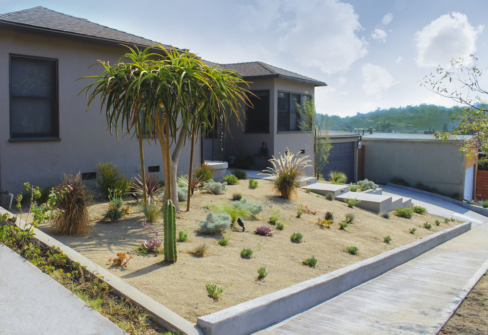 Don't let weeds come between you and your perfect yard!