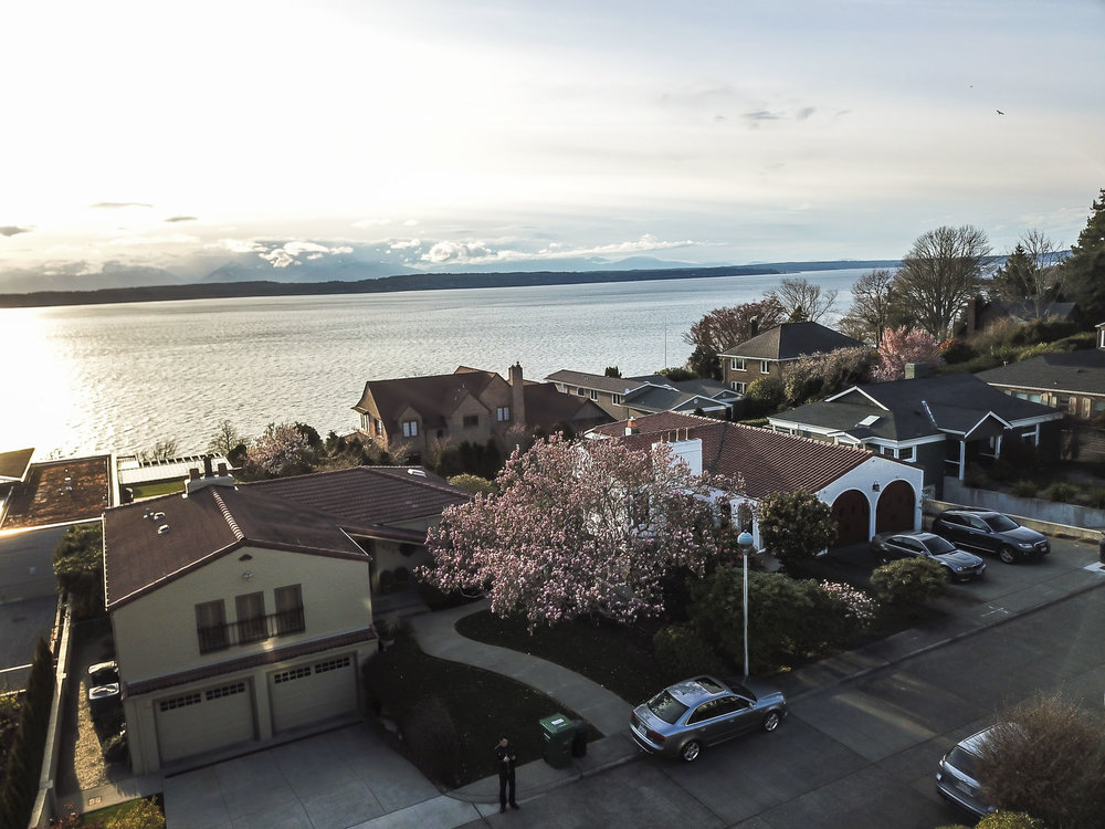 view from drone-neighborhood.jpg