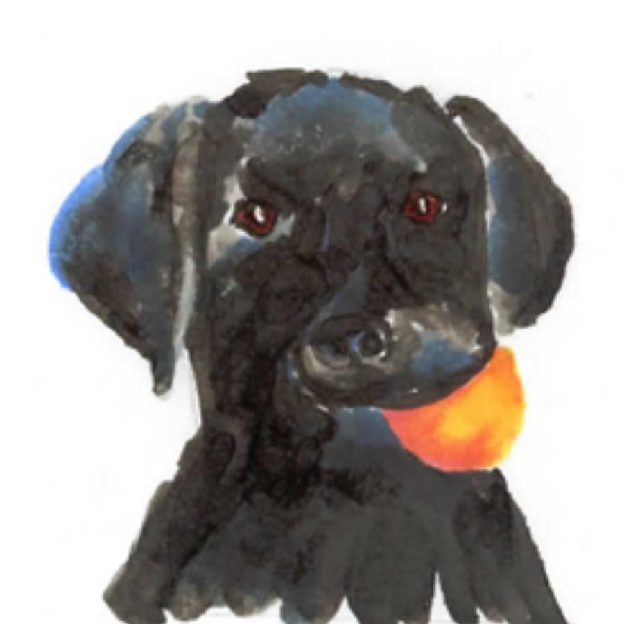 dogs7.jpg