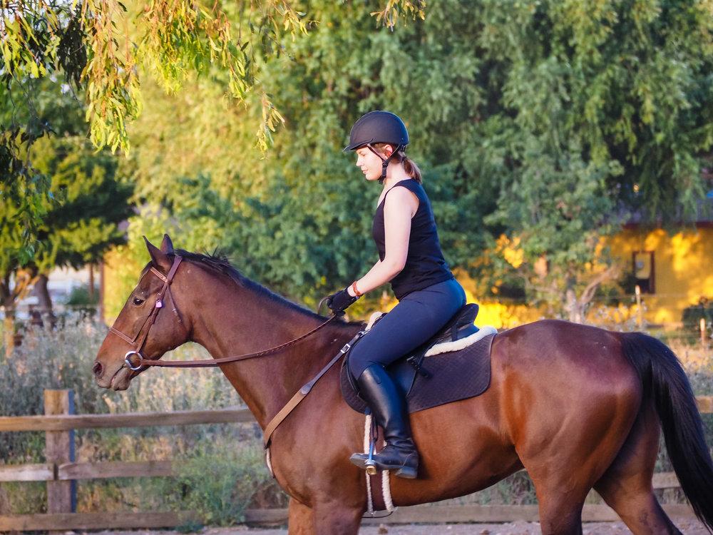 mikey-ottb-back-to-riding-3.jpg