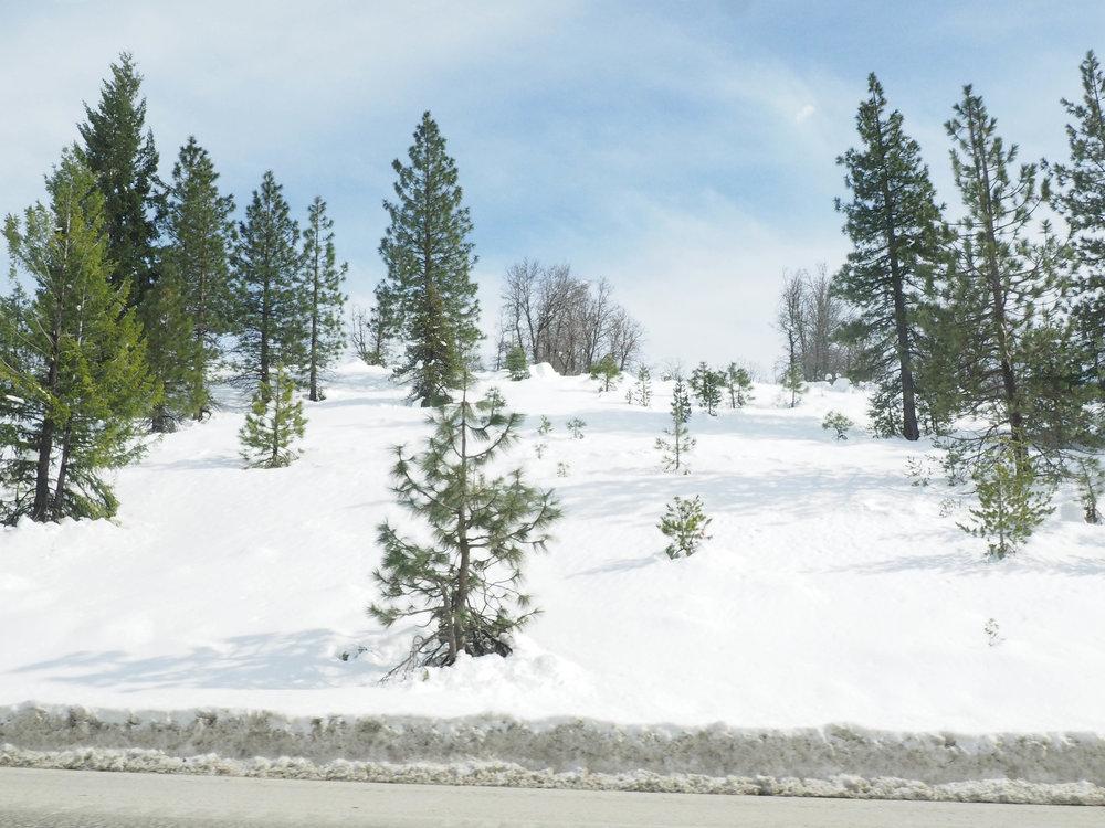 the_twoh_lake_tahoe-2.jpg