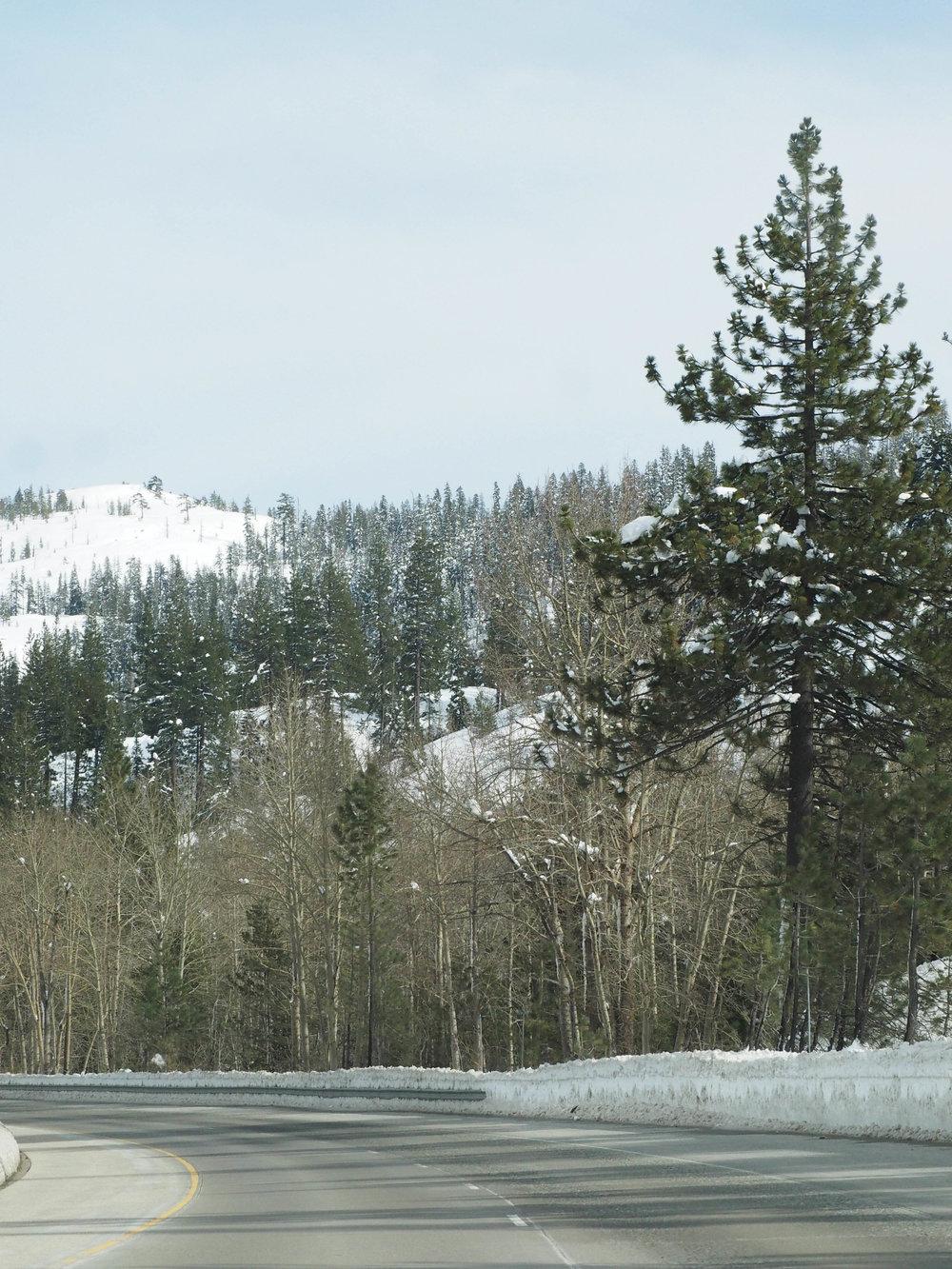 the_twoh_lake_tahoe-7.jpg