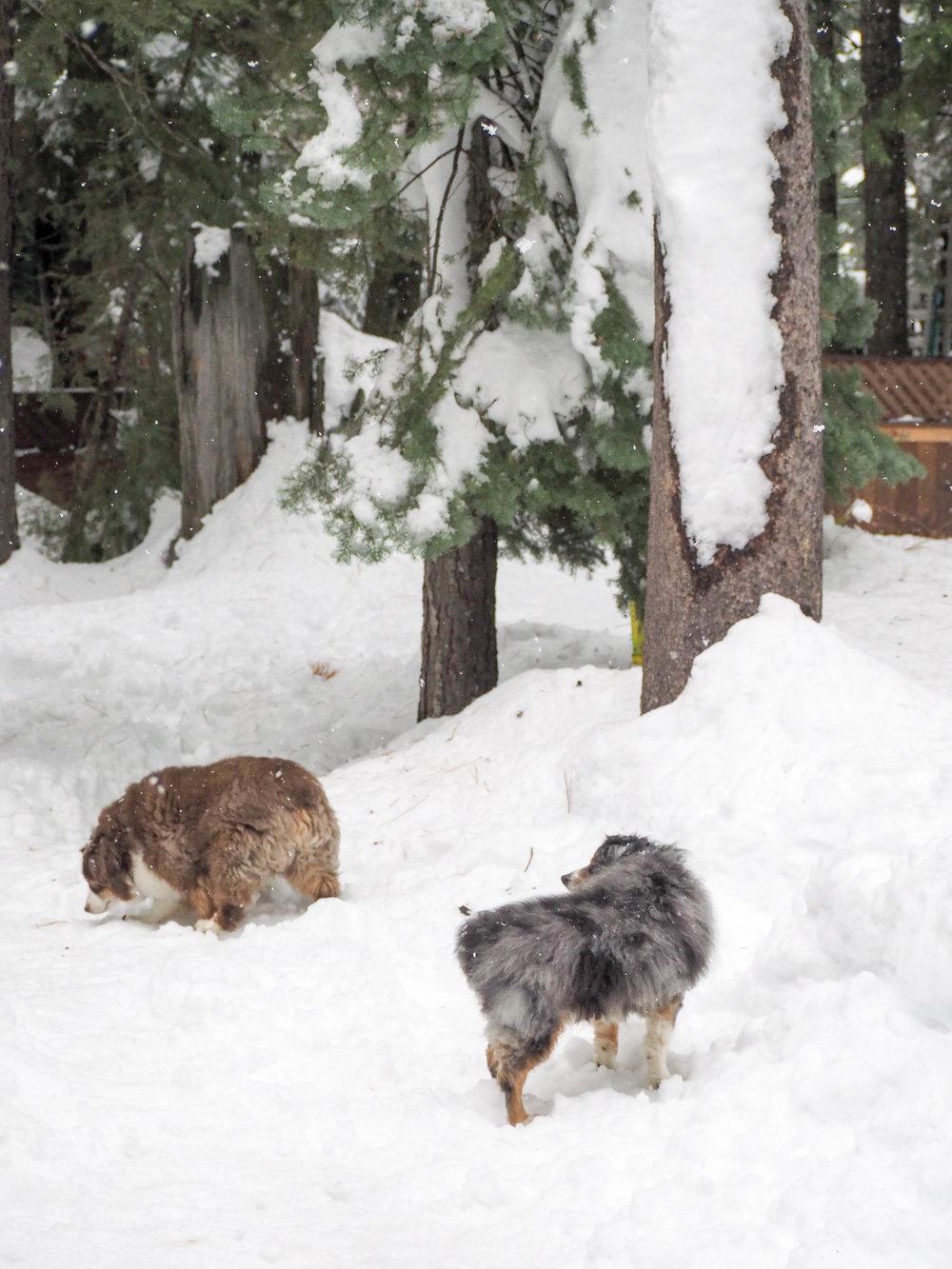 the_twoh_lake_tahoe-25.jpg