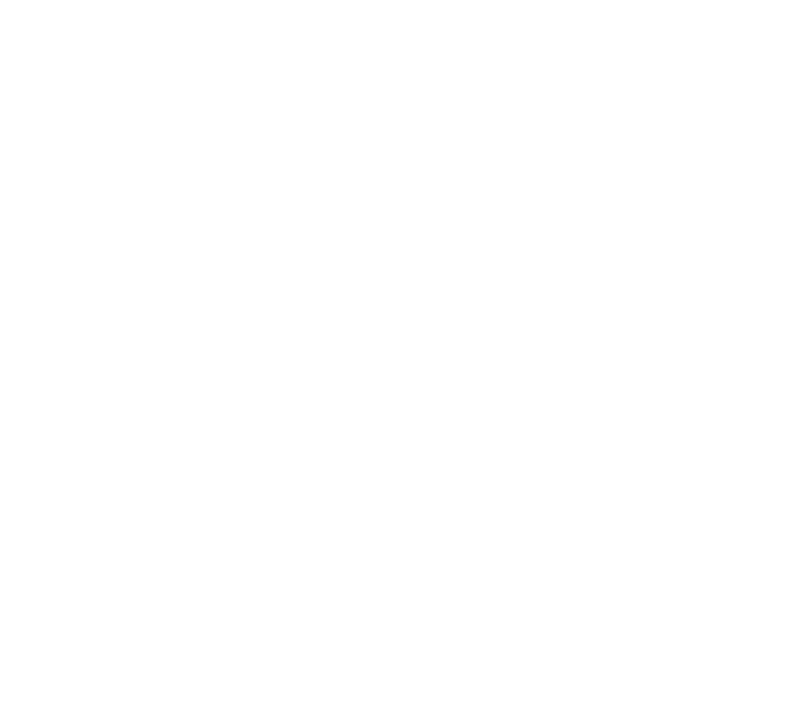 Canadian Model United Nations