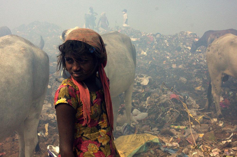 Bhalswa Dump