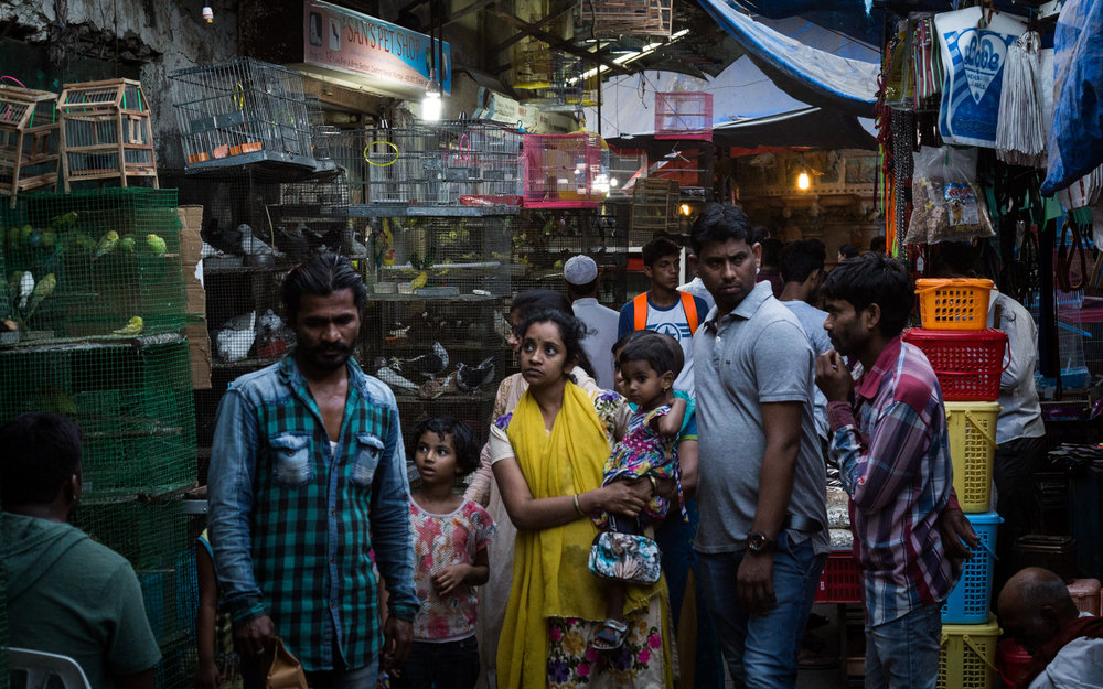 Bombay Bird Market