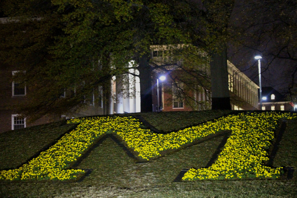 The bright-yellow flowers, designed as the school's M-shaped symbol, near the main entrance of the University of Maryland, College Park on Saturday, Dec. 8, 2018. (Alexandra Glover/The Black Explosion)
