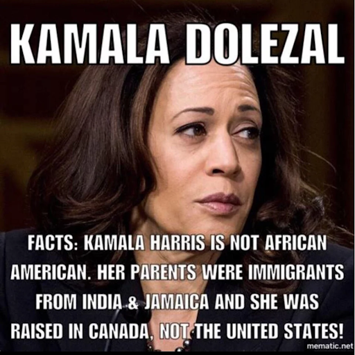 "Charlamagne tha God mentioned this social media Meme, questioning Kamala Harris and her racial background in ""The Breakfast Club"" interview on Feb. 11, 2019. Photo obtained from a  Reddit discussion board ."