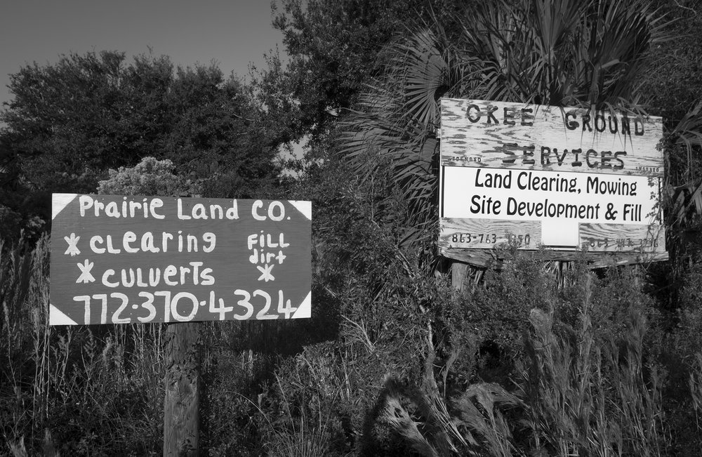These land clearing signs and others like them are found on the way in to Kissimmee Prairie State Park, one of the last four properties with wild Florida Grasshopper Sparrows.