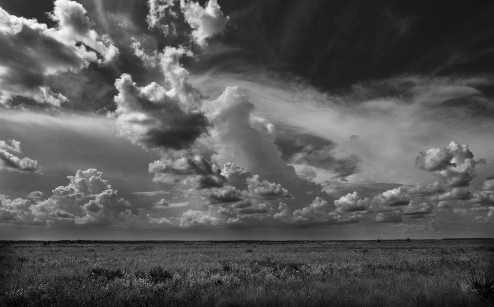 Florida dry prairie at   Florida dry prairie at the Avon Park Air Force Range