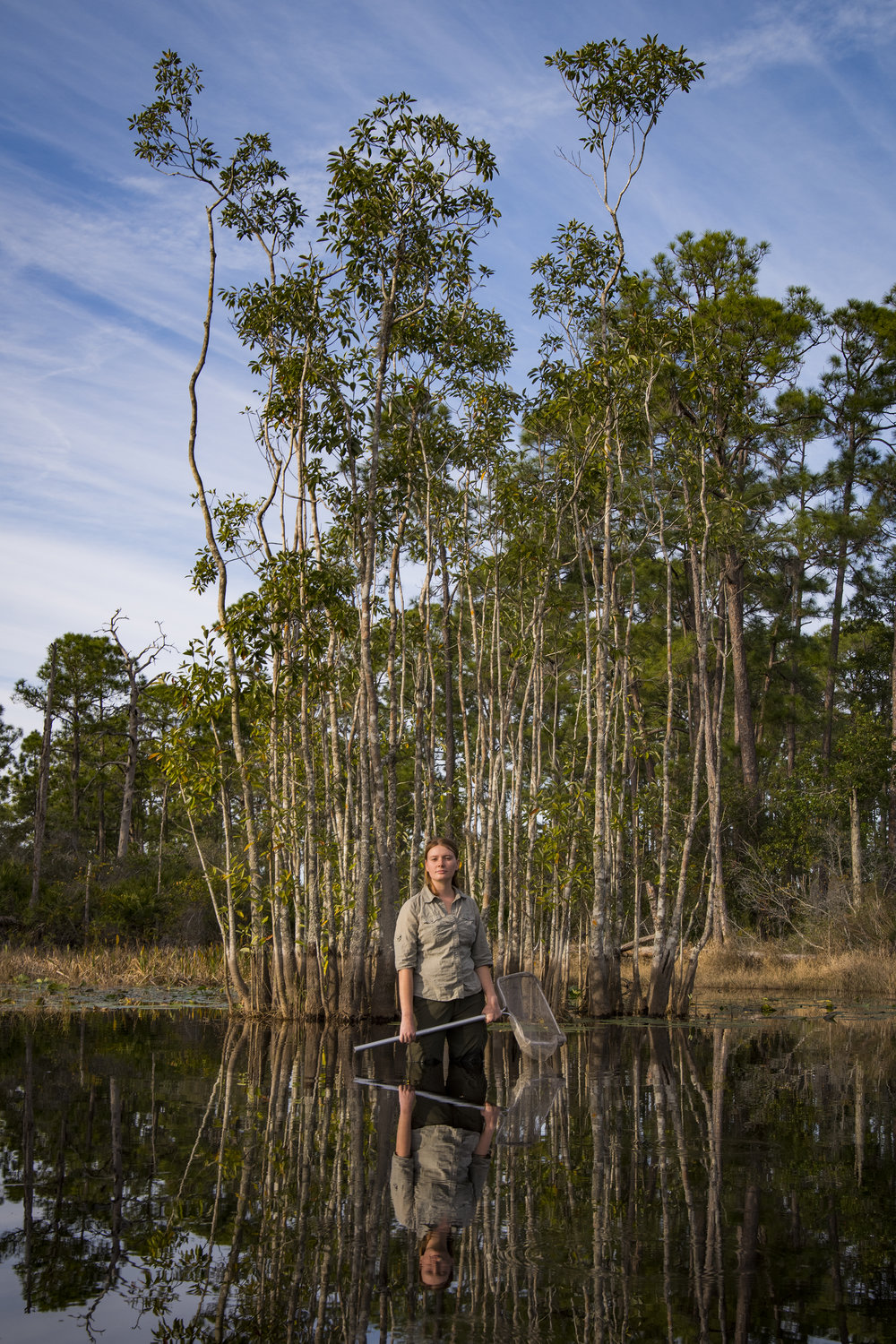Lexi Siegle    Field Biology and Education   Archbold Biological Station  2019/1/25