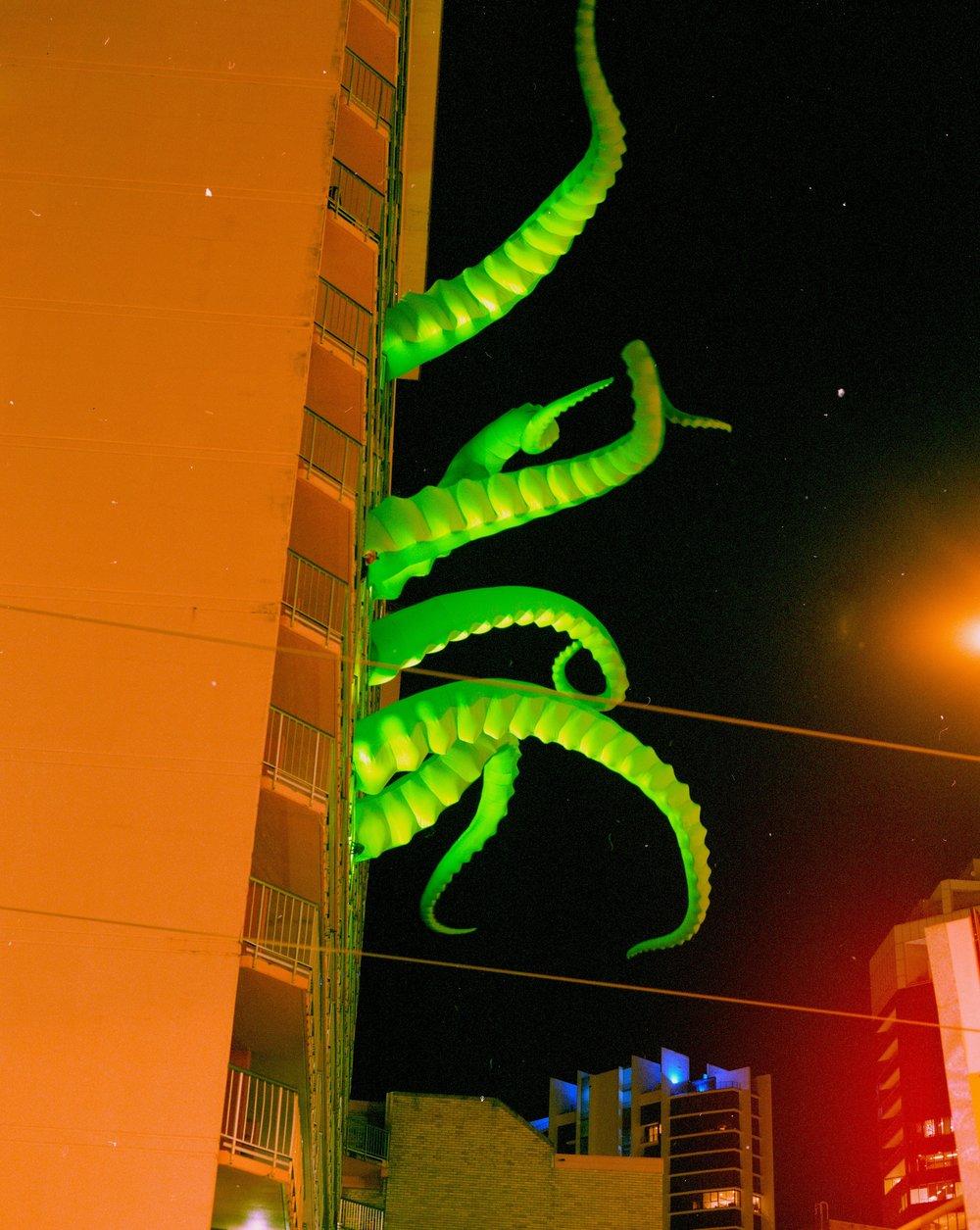 Lynn Smith green tails