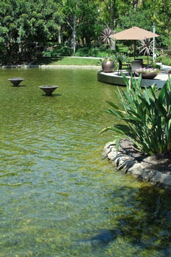 AAT-Advanced Aquatic Tech-Water Feature-Service Page-3.jpg