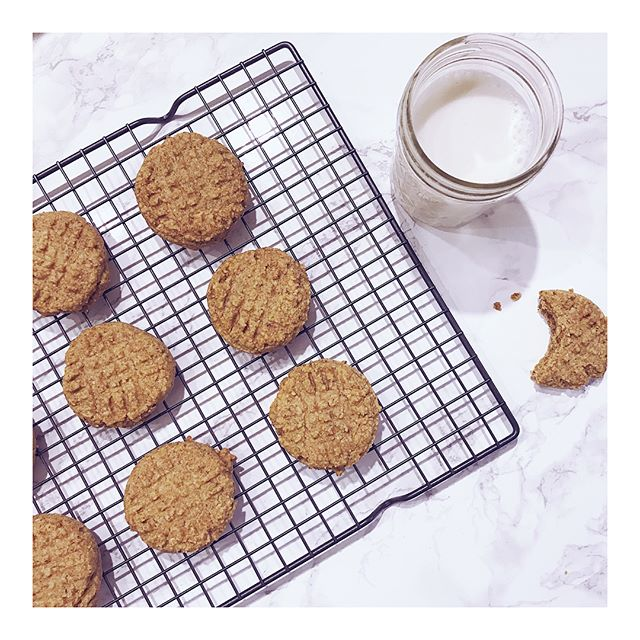 Low Carb Almond Butter Cookies 😍 Brought to you by @vega_team @lakantosweetener and @earthbalance • Swipe for ingredients! • Preheat oven to 350 deg. With handheld or upright mixer, cream earth balance, almond butter, and monkfruit sweetener. Once smooth and creamy add vanilla extract and blend. In a separate bowl mix almond flour, salt, baking soda, and Vega essentials vanilla protein powder (you can use plain unsweetened too) Slowly incorporate dry ingredients into wet until combined. Using a cookie scoop, make 15 balls of dough in a parchment paper lined baking sheet. Using a fork, gently press crisscross pattern on top of each cookie. Bake in oven for 12 min and let cool on rack (as seen in pic) Pour yourself a cold glass of non dairy milk for dippin' and enjoy! • • •