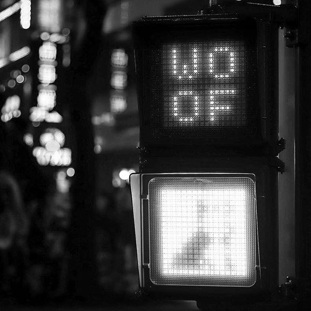 WOOF #bw #bnw #balckandwhite  #blackandwhitephotography  #黑白攝影 #白黒写真 #woof #taipei #city #taipeilanternfestival  #台北燈節