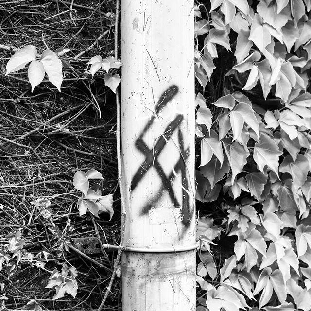 Between  #bw #bnw #balckandwhite  #blackandwhitephotography  #黑白攝影 #白黒写真 #between  #city #street