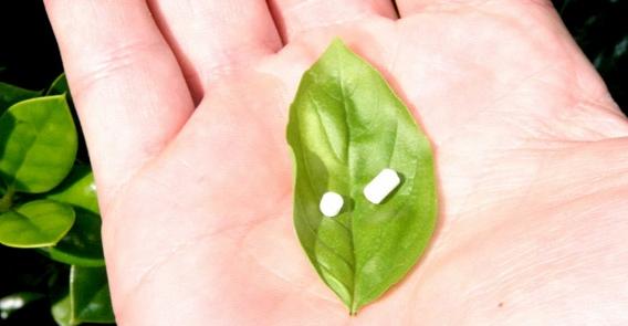Biote-pellets.jpg