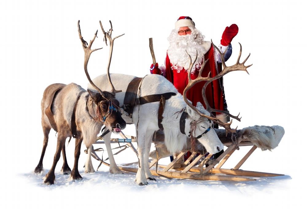 Joulupukki_ja_porot13.jpg